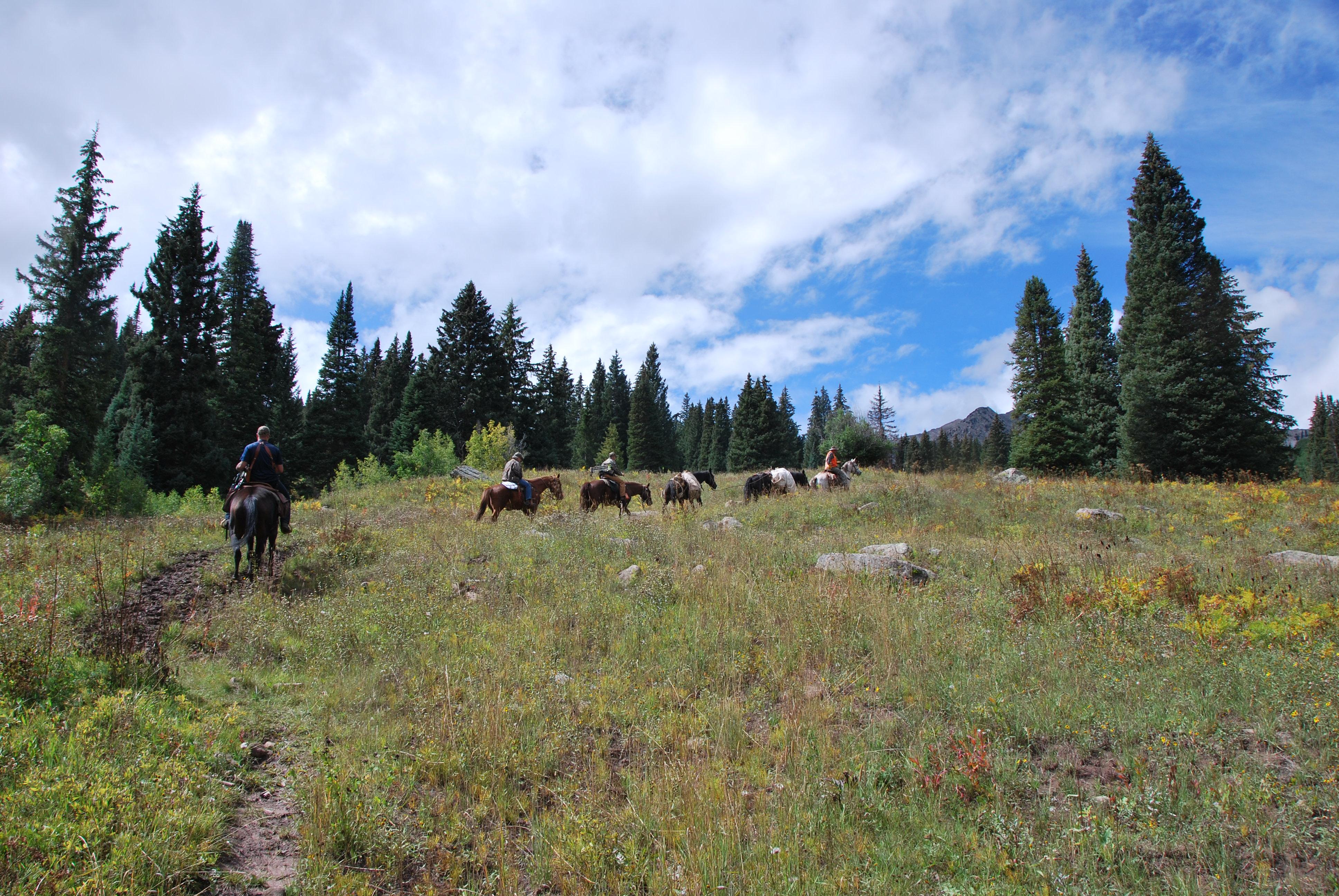 CO Elk Hunt 1