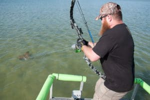 Bowfishing Stingrays 2
