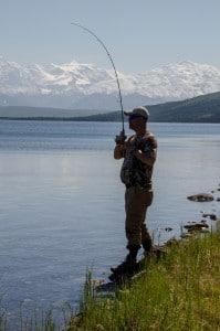 Alaska Poppy's Wish 3