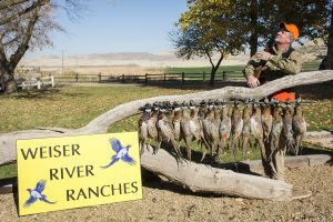 Weiser River Ranches 2016_3